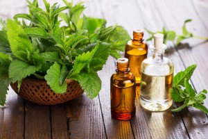 barefut-peppermint-essential-oil